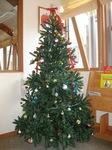 Christmas tree 001.jpg